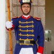 Presidential guard in presidential palace, Quito — Stock Photo #20882265