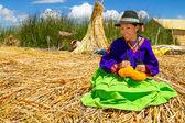 民族服装的拉丁女人。秘鲁。南美 — 图库照片