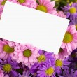 Stock Photo: Mother day greeting, blank