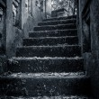 scary stone stairs in the forrest — Stock Photo
