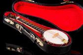Vintage Banjo — Stock Photo