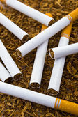 Closeup of cigarettes detail on tobacco background — Stock Photo