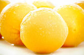 Oranges close up wet — Stock Photo