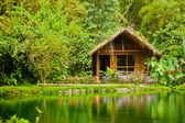 Cabin in the jungle — Stock Photo