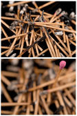 Matches set — Stock Photo