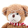 Clever teddy bear on a white background with glasses — Foto Stock