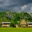 Village in Yasuni national park , Ecuador — Stock Photo