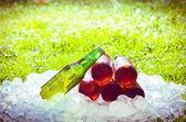 La hierba de cerveza y hielo, fuera de foco con una luz brillante intenso — Foto de Stock