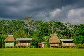Village in Yasuni national park , Ecuador — Stock Photo