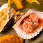 Shrimp cebiche served on a sea shell — Stock Photo #46145147