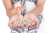 Hands carrying sand with two mini umbrellas — Стоковое фото