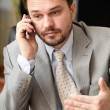 Portrait of a mature business man on phone — Stock Photo #20506205