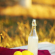 Lemonade — Stock Photo #31193795