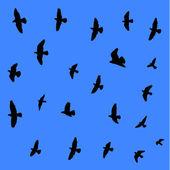 летающие птицы фон. — Cтоковый вектор