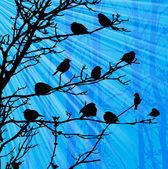 Paysage avec des oiseaux sur l'arbre et sunray. — Vecteur