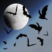 Sky, moon, web and bats — Stock Vector