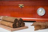 Cuban cigar and humidifier — Stock Photo