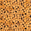 Stock Photo: Stacked timber logs