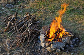 Wooden camp fire — Stock Photo