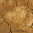 Clay dried soil cracked texture background — Stock Photo