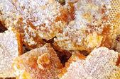 Honungskakor med honung — Stockfoto