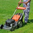 Worker moving lawn on the meadow — Foto Stock