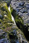 River Cijevna, Montenegro — Stock Photo