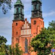 Stock Photo: Cathedral in Poznan, Poland