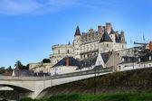 Castello di amboise in francia — Foto Stock