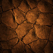 Stock Photo: Texture earth cracked because of drought