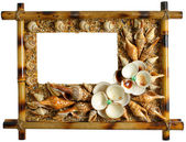 Photoframework from sea cockleshells and pearl — Stock Photo