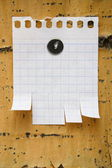 Clean sheet of paper on wood — Stock Photo
