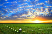 Fußball auf dem Feld — Stockfoto