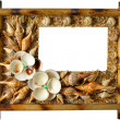 photoframework de perles et de coquillages de mer — Photo #45859605