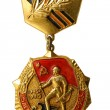 "Medal ""30 years of a victory over Great Domestic war "" — Stock Photo #45936825"