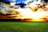 Spring sunset — Stock Photo
