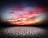 Drought cracks — Stock Photo