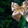 Golden bow on the new year tree — Stock Photo