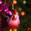 Cock-toy on the new year tree — Stock Photo