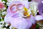 Wedding rings on orchid — Stock Photo