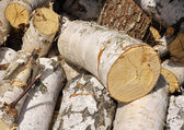 Billet of firewood. — Stock Photo