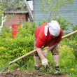 Stock Photo: Spring works in garden.