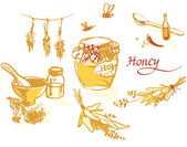 Honey and others natural medicine for the winter flue — Stock Vector