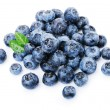Blueberries on white — Stock Photo
