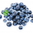Blueberries on white — Stock Photo #16343249