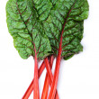Swiss chard — Stock Photo #31672317