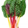 Stock Photo: Swiss chard Rainbow