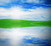 Green grass against a blue sunny sky — Stock Photo
