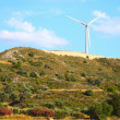 Large windmill on the hill sunny day - Stockfoto