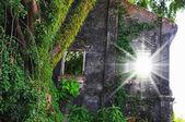 Window in the stone wall — Foto Stock